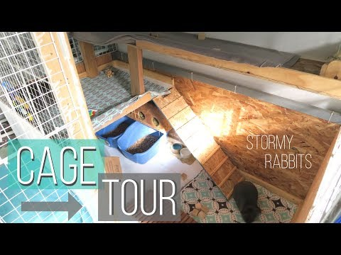 Cage Tour September 2017