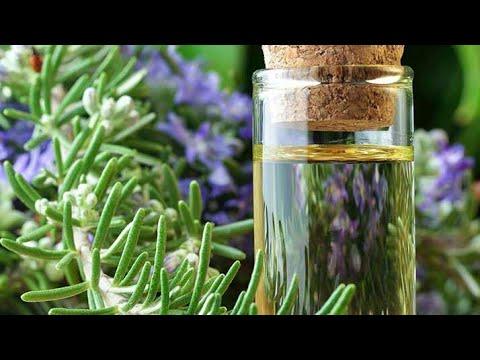 DIY Rosemary oil at home for hair and skin.
