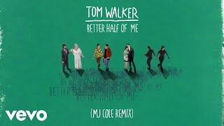 Tom Walker - Better Half of Me (MJ Cole Remix) [Audio]