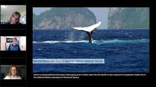 Marine Mammals in National Marine Sanctuaries