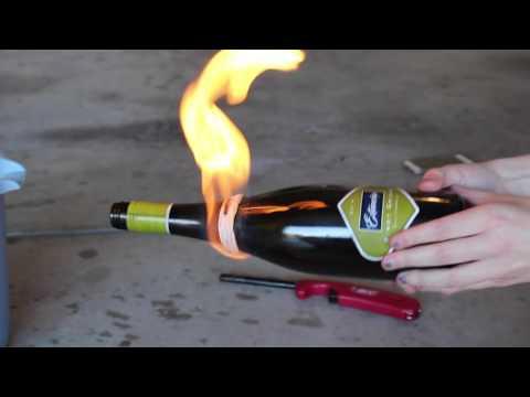 DIY Wine Bottle Planter
