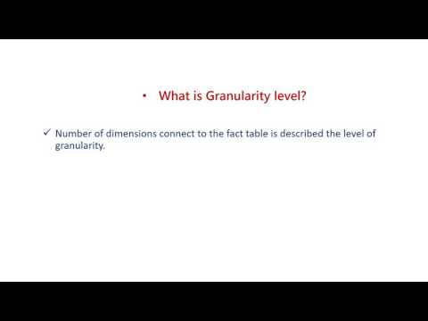 50 What is Granularity level