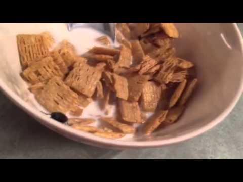 Fly in cereal.