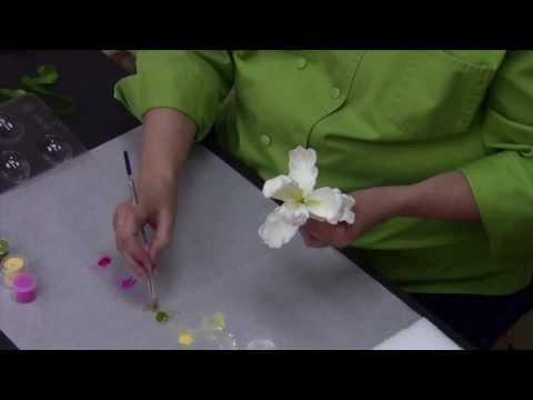 Sugar Paste Parrot Tulip Tutorial
