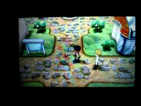 Pokémon X and Y: Level 100 in your sleep