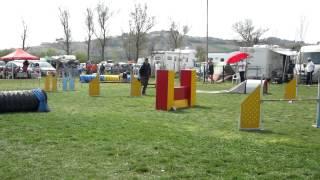 giovanni vitellio jump 31 3 12
