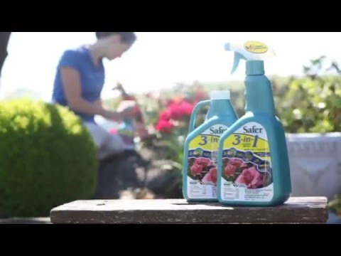 Safer® Brand 3-in-1 Garden Spray for Organic Gardening