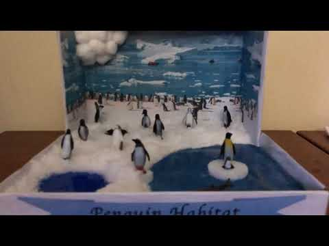 Penguins habitat diorama project for school project