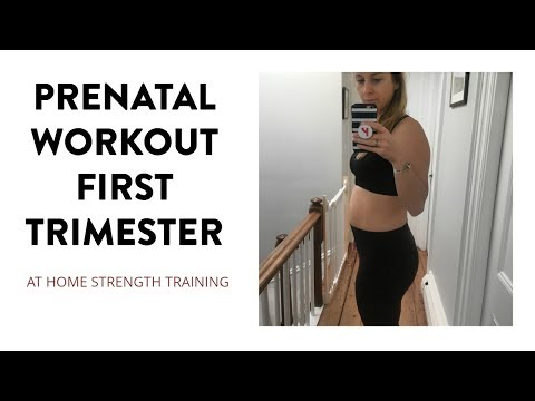 Prenatal Pregnancy Workout First Trimester | SarahFit Pregnancy Fitness
