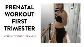 Prenatal Pregnancy Workout First Trimester   SarahFit Pregnancy Fitness