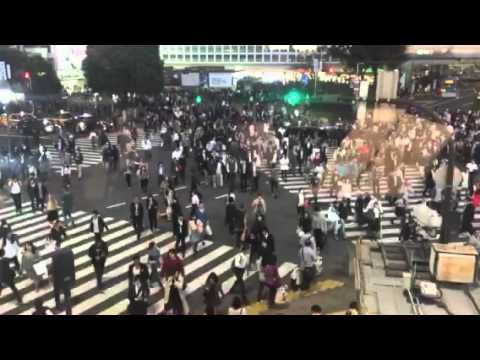 Shibuya Crossing from the Starbucks Window