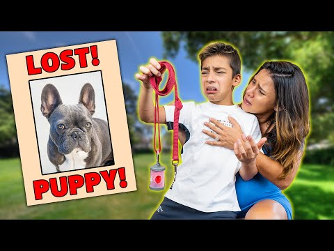 """We LOST Our DOG """"Gucci"""" (He Ran Away!) 💔   The Royalty Family"""