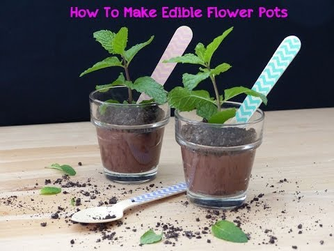 How To Make Edible Flower Pots