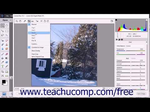 Photoshop Elements 2018 Tutorial Camara Raw Tools Adobe Training
