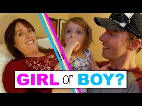 Baby Gender Reveal! - Is it a BOY or GIRL?