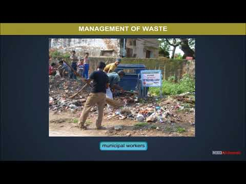 Class 11 Chemistry - Strategies To Control Environmental Pollution Video