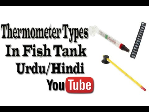How Many Types of Thermometer Used in Fish Tank Urdu/Hindi