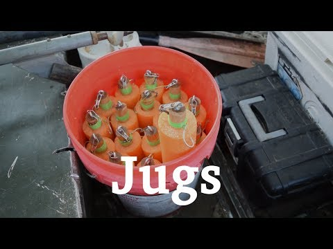 Noodles | Jug Fishing Tips