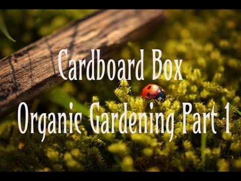 Cardboard Box Gardening FREE Weed Control Organic Garden DIY Part 1