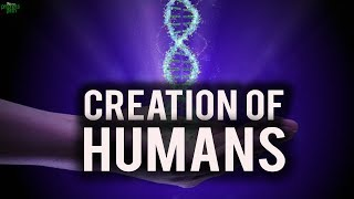 HOW WERE HUMANS CREATED