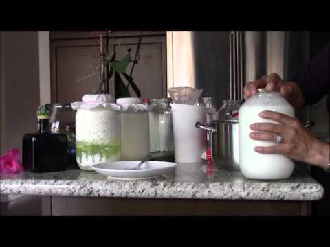 How to Make Sweetest  Homemade  Milk Kefir