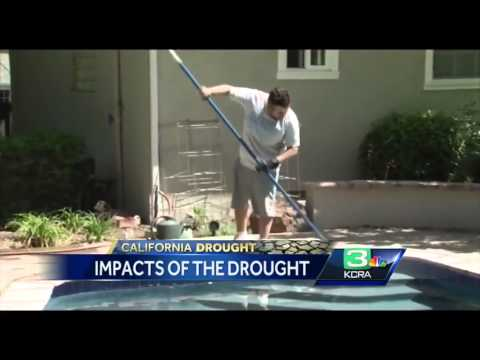 Gov. Brown asks businesses to save water