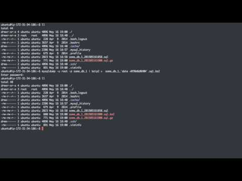 06 Backup and Restore MySQL with mysqldump