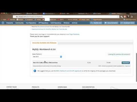 MySQL local database instance setup
