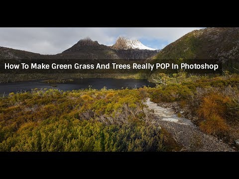 How To Make Green Grass And Trees Pop In Photoshop