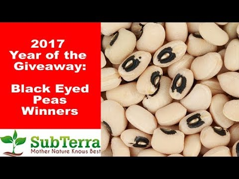 September Black Eyed Peas Winners