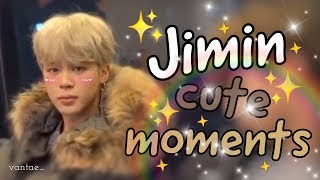 Download BTS Jimin Cute and Funny Moments Video
