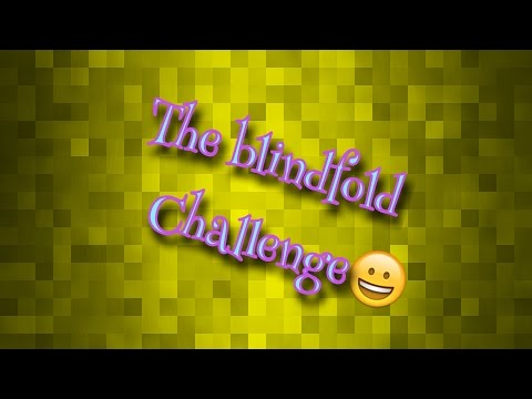 The Blindfold Challenge!!