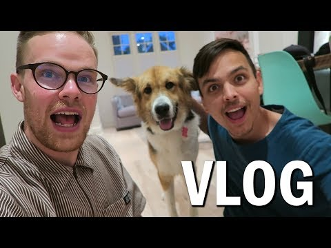 We Adopted a Dog!! (Vlog #36)
