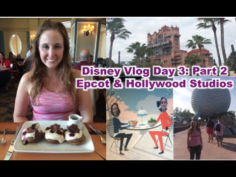 Disney Vlog Day 3 Part 2: Epcot & Hollywood Studios