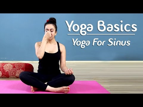 Yoga To Cure Sinus And Cold | Yoga Poses For Sinus | Yoga For Beginners - Yoga With AJ