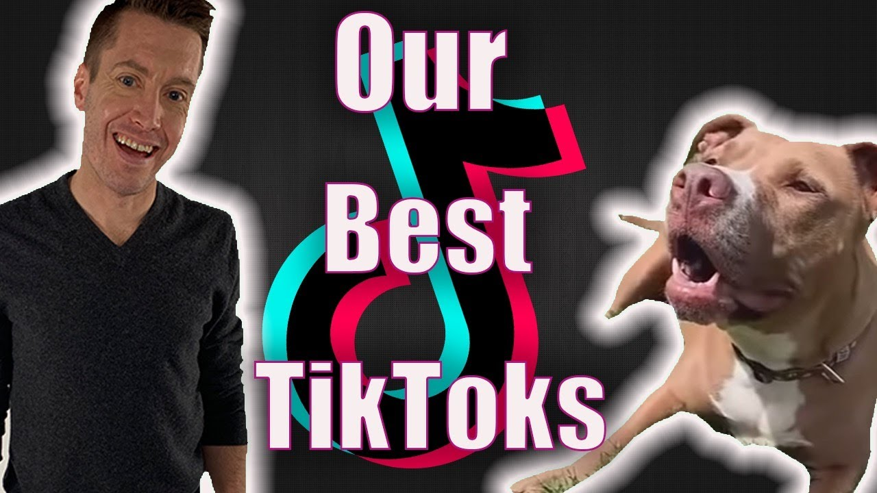 OUR BEST TIKTOKS   Robby and Penny