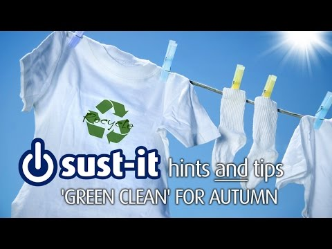 'How Clean is Your House' guru Aggie MacKenzie's top 'green clean' tips for autumn