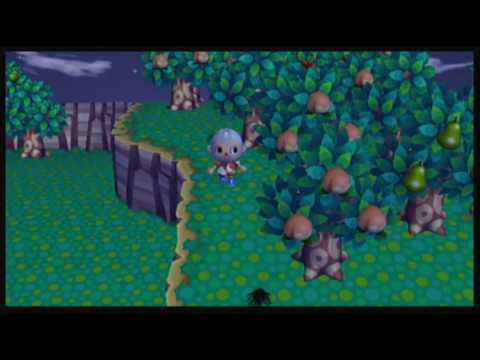 Animal Crossing: City Folk - Stupid Tarantula