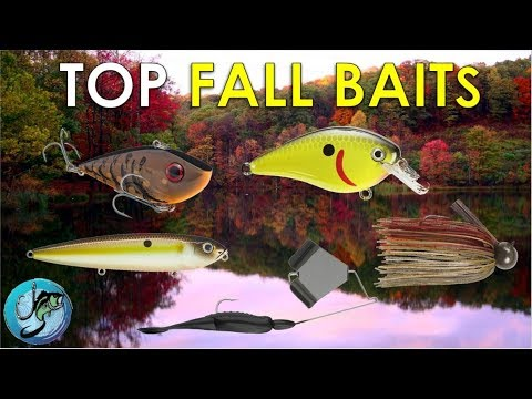 Top 5 Fall Fishing Lures + Where To Throw Them