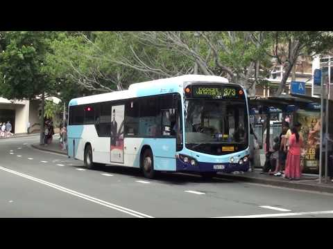 Buses at Circular Quay - Sydney Transport