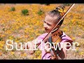Sunflower (Post Malone) - Violin Cover by Karolina Protsenko