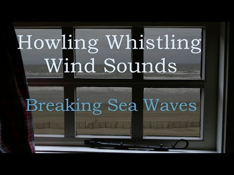Howling Wind Sounds from Beach House with Sea Waves Crashing at Shore