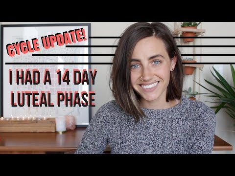 Cycle Update | I Had a 14 Day Luteal Phase