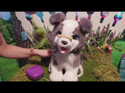 FurReal Friends Ricky Trick-Lovin Pup: Cuter than the Real Thing?