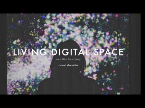A Visit to Living Digital Space and Future Parks by teamLAB at Pace Art + Technology