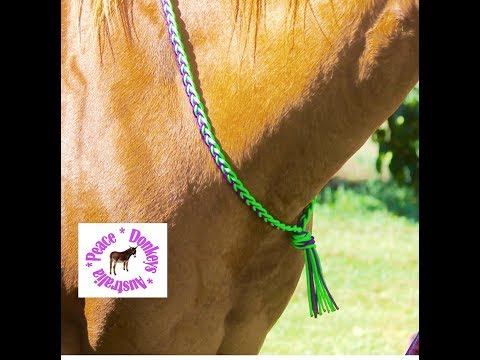 How to make a plaited paracord neck rope for a horse.