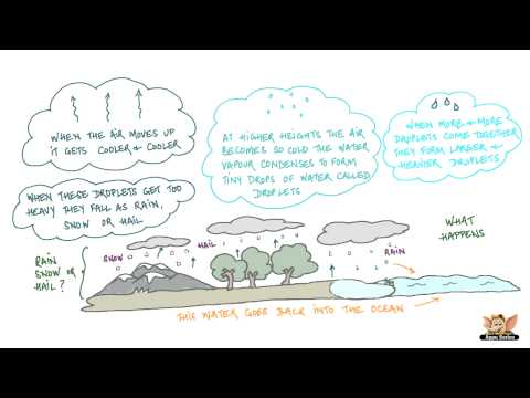 Water - Water Cycle