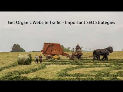 Get Organic Website Traffic - Important SEO Strategies