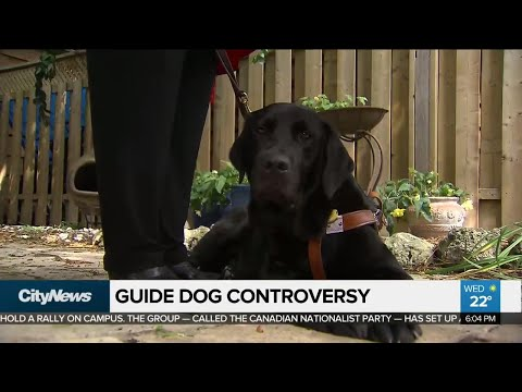 Blind woman fights back after guide dog turned away from BnB