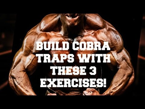 Build Cobra Traps With These 3 Exercises!
